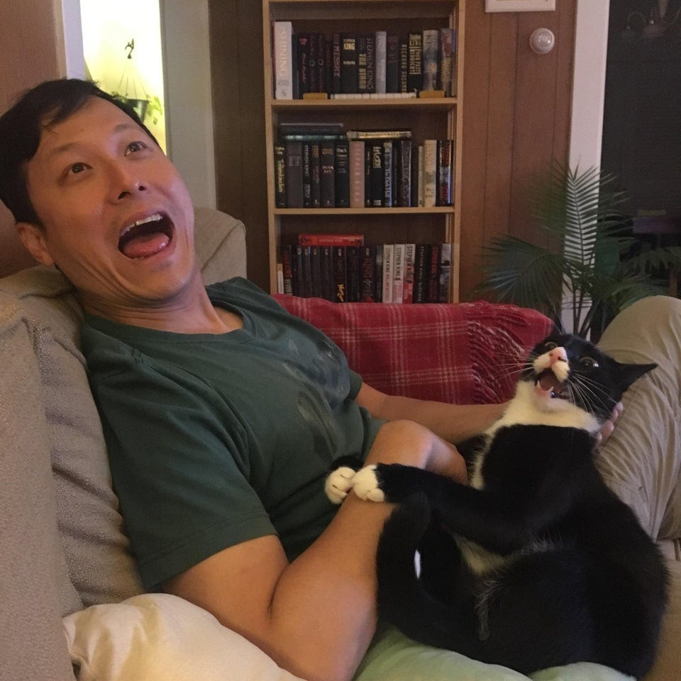 cat and human showing same reaction